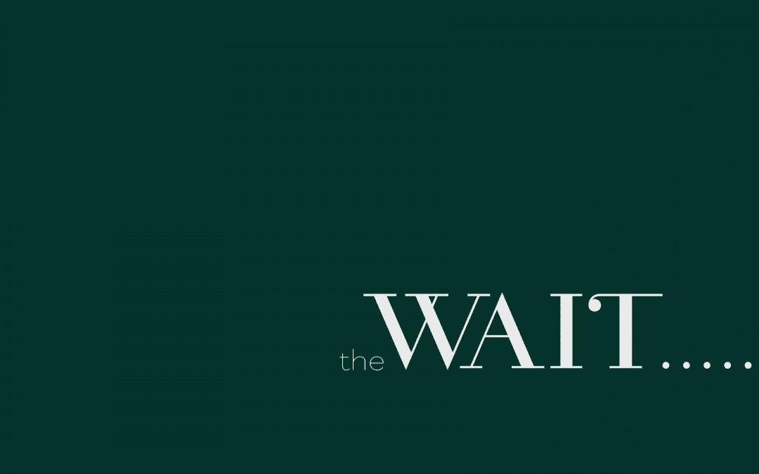 [Next Steps] The Wait Week 4: The Wait Is Over