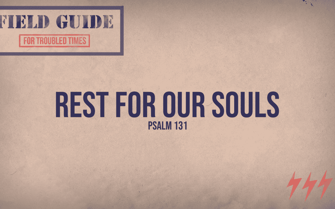 4.26.20 | Field Guide For Troubled Times: Rest For Our Souls