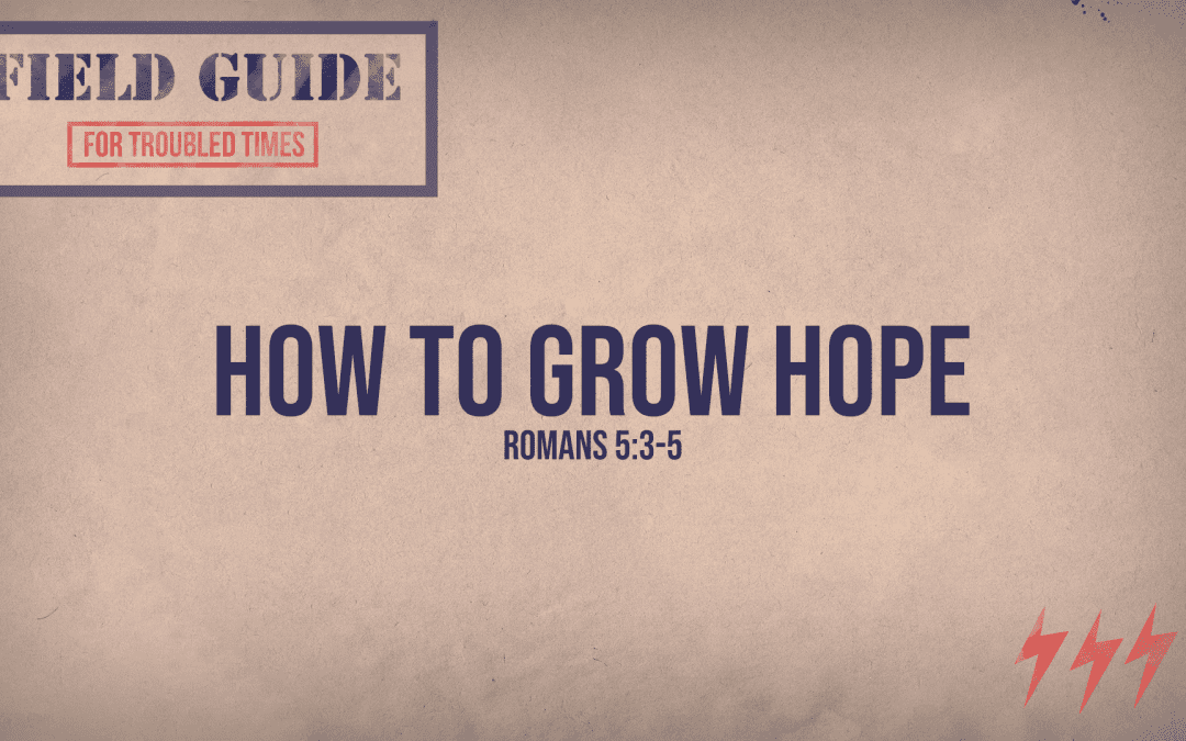 5.3.20 | Field Guide For Troubled Times: How To Grow Hope