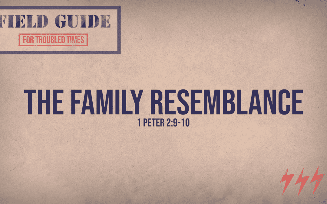 Field Guide For Troubled Times | The Family Resemblance